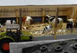Exposition maquettes agricoles17